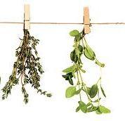 Užitočné rastlinky
